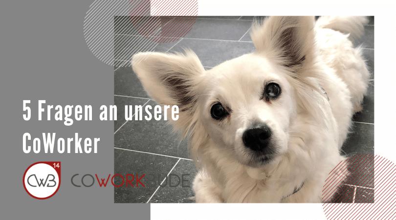 5 Fragen an unsere CoWorker – Coco Jansen